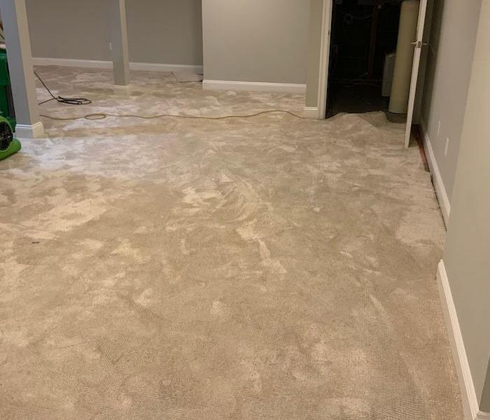 Basement with wet carpet