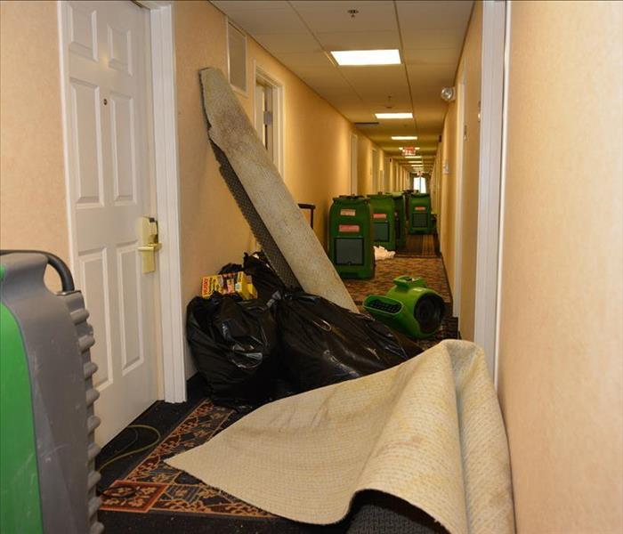 hotel corridor stuffed with carpeting drying and equipment