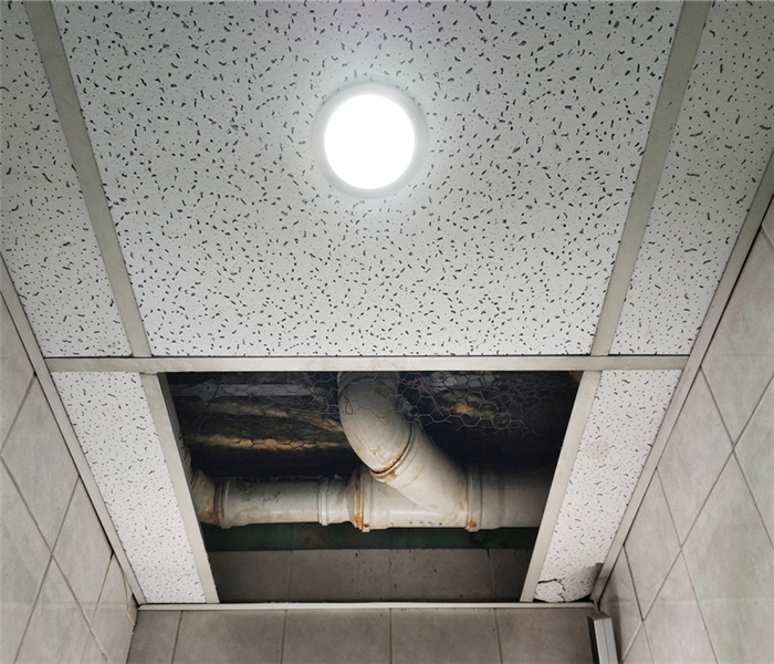 water damaged ceiling tiles in office