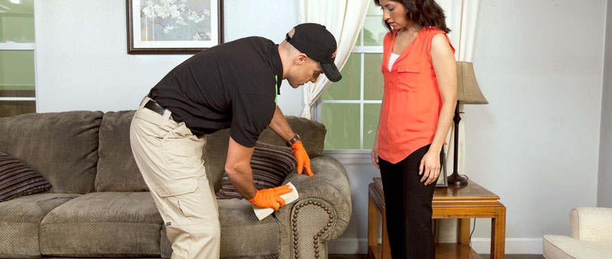 Paramus, NJ carpet upholstery cleaning