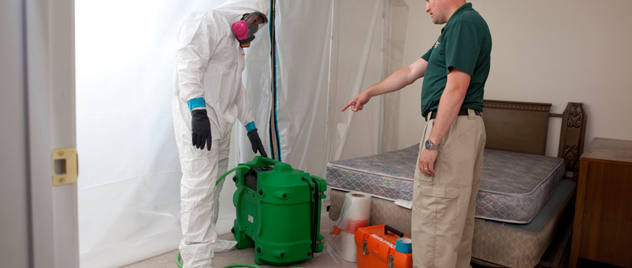 Paramus, NJ mold removal process